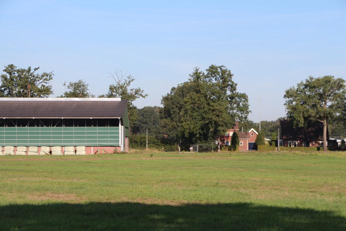 De Rietmolense veehouder zit tegen de bebouwde kom van Rietmolen aan, zoals hier gezien vanaf de N315/Haaksbergseweg.