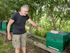 Van 250.000 bijen bestolen imker uit Raalte: bijen big business