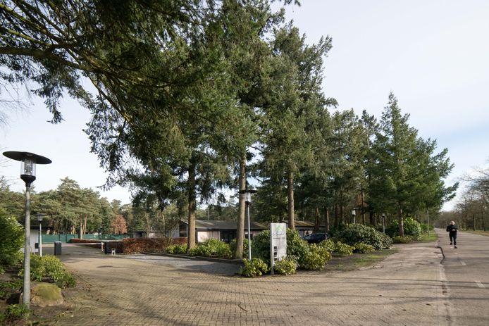 De Dennenhoek is het tweede voormalige vakantiepark dat nu ook formeel kan worden omgevormd tot 'woonwijk', met zestig woningen. Aan de kant van de Parallelweg kan woonruimte worden gemaakt voor 150 arbeidsmigranten.