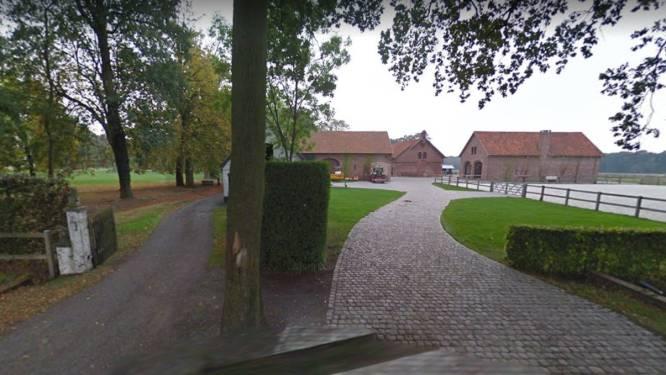 Straks coronaproof op bezoek bij Sinterklaas in de Munkehoeve in Wingene