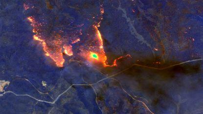Indrukwekkende satellietbeelden tonen catastrofale bosbranden in Australië