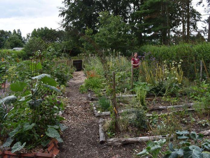 Marleen Massonnnet, architecte de jardin, a un jardin frais qui demandent peu d'entretien avec une riche biodiversité chaque saison.
