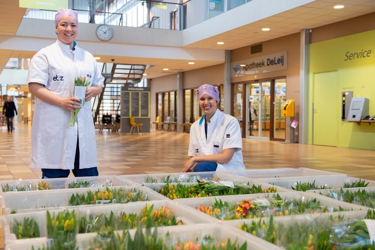 Bosjes tulpen voor het personeel van het ETZ-ziekenhuis in Tilburg. Beeld ETZ Fotografie.