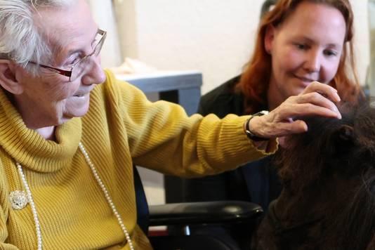 Mevrouw Achterkamp, bewoonster van het PW Jansen, geniet intens van het contact met therapiepaardje Woezel, de mini-shetlander. Op de achtergrond Annebé Temminck, de initiatiefneemster.
