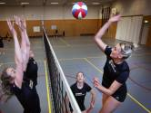 Na zoomen en beachen nu weer het echte werk voor Volley Tilburg
