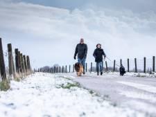 Toch nog een beetje winter: vandaag opnieuw lokaal sneeuw
