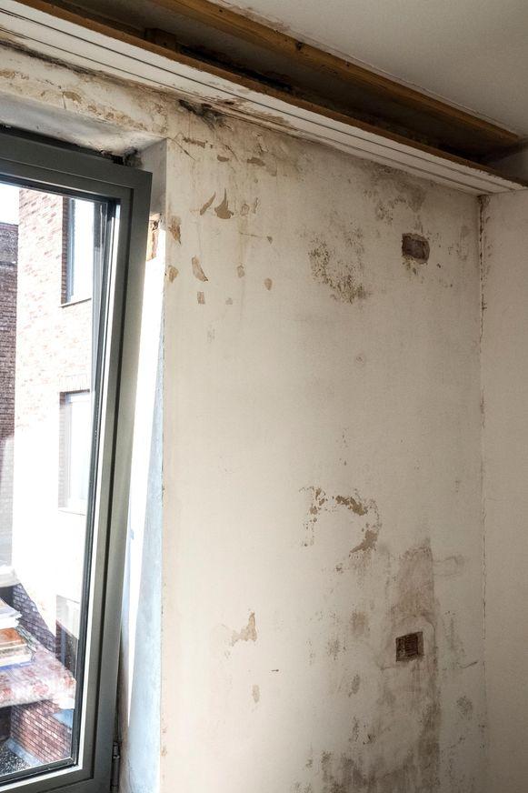 fiasco in sociale woningbouw slaapkamer ouders vol met schimmel