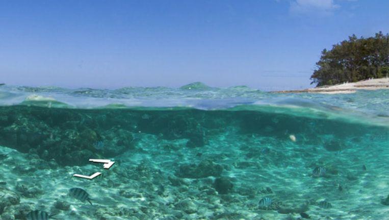 The Great Barrier Reef via Google Streetview Beeld Google
