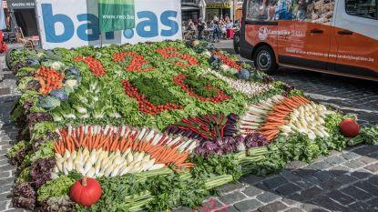 Landelijke Gilde maakt groentetapijt voor jubileum