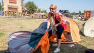 Werken op Tomorrowland? Kringwinkel Ecoso zoekt 200 paar helpende handen