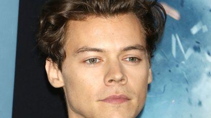Harry Styles wordt betast op podium