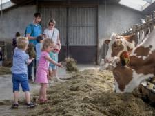 Grote belangstelling voor 'Koekeloer bij de boer' in Hertme