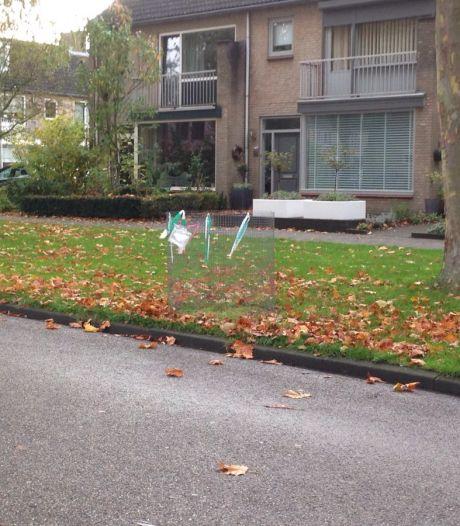 Dit jaar geen bladkorven in Bergen op Zoom