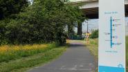 Vlaamse regering keurt subsidie van half miljoen euro goed voor fietssnelweg naar luchthaven