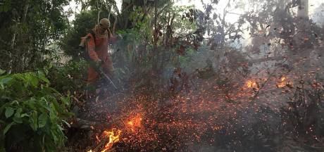 Incendies en Amazonie: le gouvernement brésilien libère de nouveaux moyens