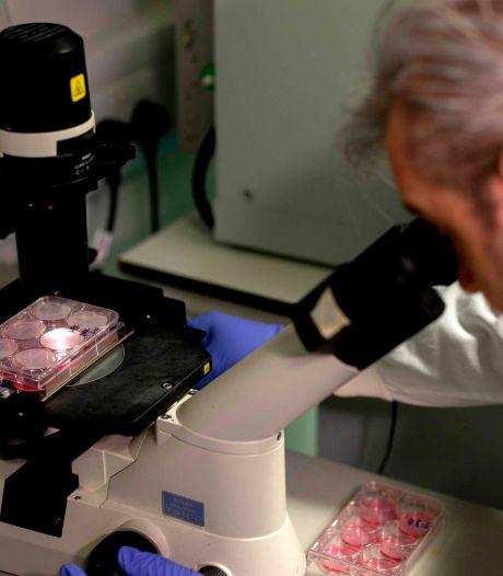 Les personnes asymptomatiques perdraient plus rapidement leurs anticorps