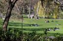 Zonaanbidders in het Kronenburgerpark, verspreid over diverse kleedjes, nemen woensdagmiddag de coronamaatregelen niet in acht.