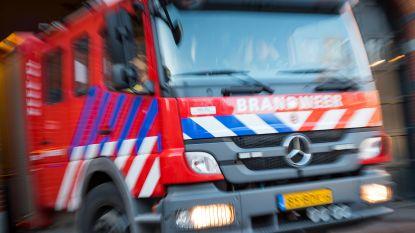 """Nederlandse brandweerman krijgt kopstoot tijdens blussen: """"We komen om te helpen en niet om te vechten!"""""""