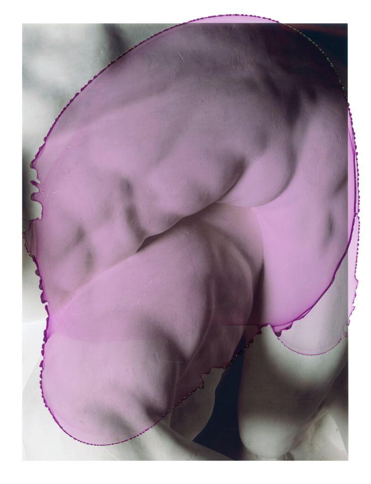 Pancrastinae #01, 2019 Beeld Viviane Sassen