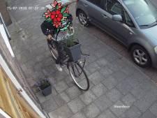 Bloemendief in Zwolse Gladiolenstraat staat er gekleurd op