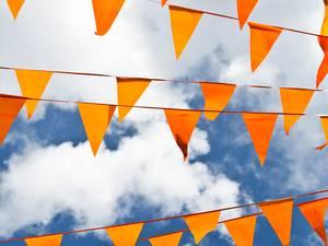 Hulde voor de Oranjegezinde feestmakers