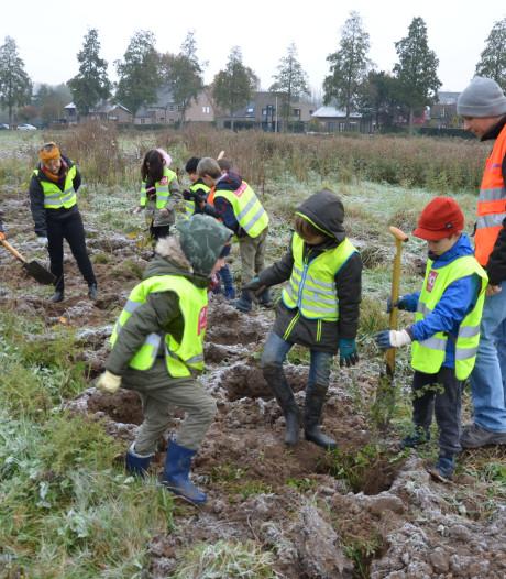 Schoolkinderen planten bomen in natuurgebied De Assels