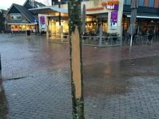 Gemeente voelt zich verdrietig op Facebook, over alweer een vernielde boom in Rijssen