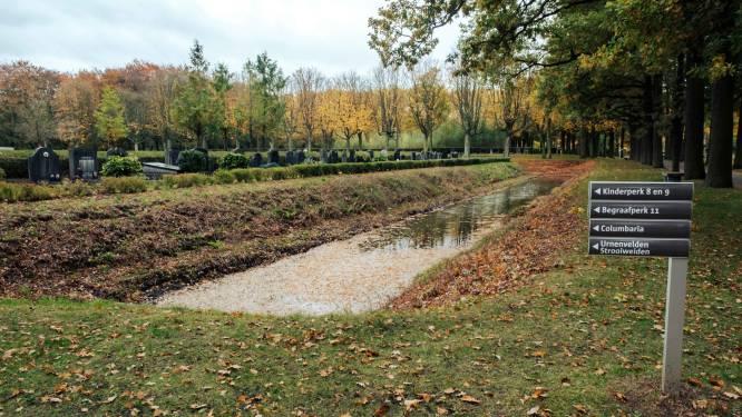 Zichzelf klonende marmerkreeften terroriseren Antwerpse begraafplaats Schoonselhof