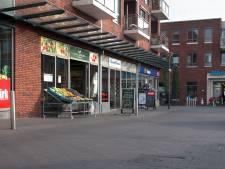 Hardinxveld-Giessendam wil centrum levendiger maken