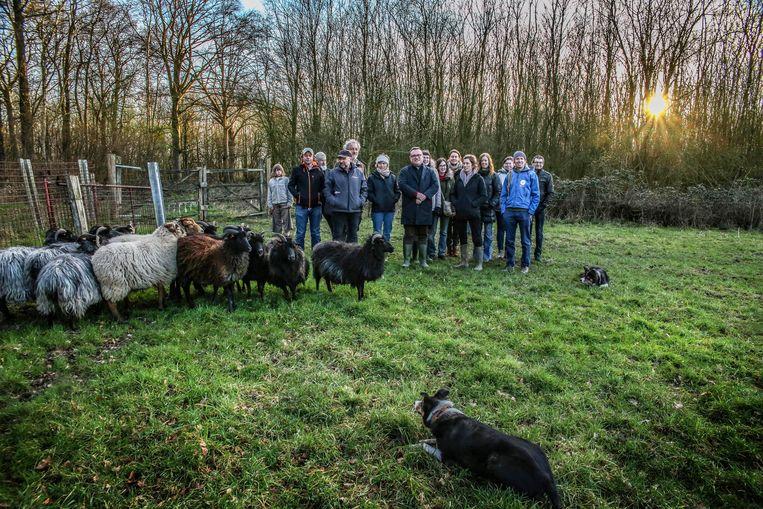 Een van vroegere projecten die op steun konden rekenen: een begrazingsproject met schapen in  de Galgebossen in Ieper
