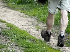 Avondvierdaagse Hilversum start vanaf volgend jaar bij Wasmeer
