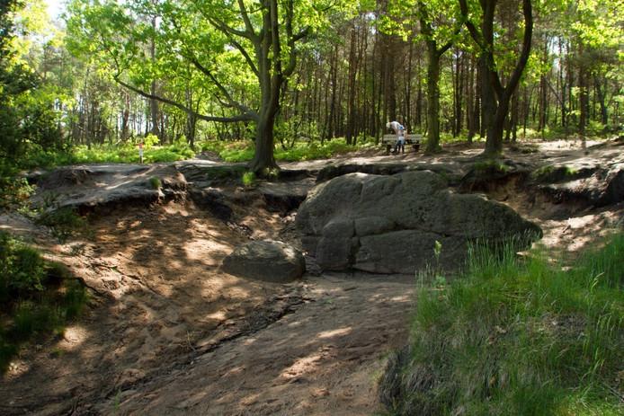 De dikke steen. Deze steen ligt op de route Spoor van de Leeuw op de Lemelerberg. Foto Erna Lammers