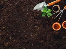 Coronacrisis en vroege zomerweer gouden combinatie voor tuinbranche