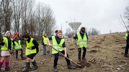 Scholieren planten 2.000 bomen aan Het Broek