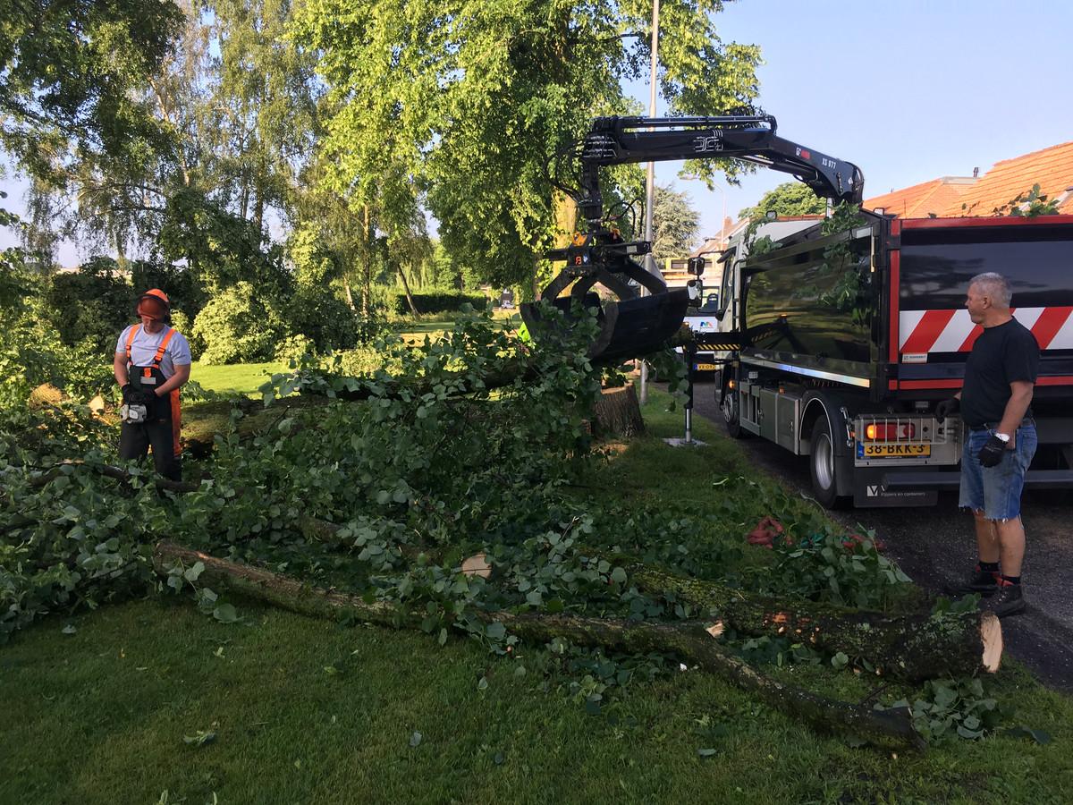 The day after in Hedel. Omgewaaide bomen worden gesnoeid na een avond met hevige onweersbuien.