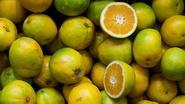 Helpt vitamine C verkoudheid en griep voorkomen?