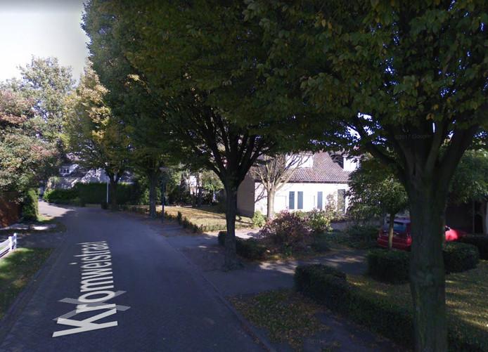 Bewoners van de Kromweistraat in Moergestel dringen bij de gemeente aan op kap van twaalf bomen voor de huisnummers 2, 4 en 6.