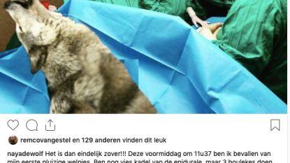 """'Naya de Wolf' over bevalling op Instagram: """"August is flauwgevallen"""""""