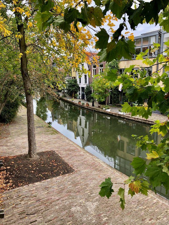 Wandelen langs de Oudegracht, vanaf het Ledig Erf, zo mooi in de herfst!