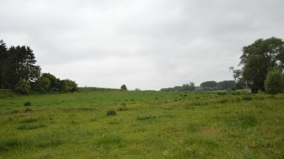 """Project Kerkskenveld mag voor gemeente niet louter uit woningen bestaan: """"We denken aan buurthuis of sportzaal"""""""