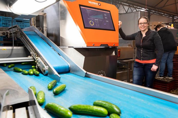 Simone Keijzer heeft met het bedrijf Gearbox Innovations een machine gemaakt die zelf groente en fruit keurt en sorteert.