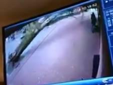 Vrouw met kinderwagen ontsnapt aan vallende boom