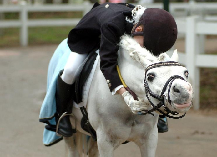 Maxime Osse heeft net haar dressuurproef afgelegd tijdens de Nationale Kampioenschappen in Wanroij. Het Zeelandse meisje omhelst haar pony want het ging prima. Ed van Alem klikt in maart 2004 op het juiste moment.