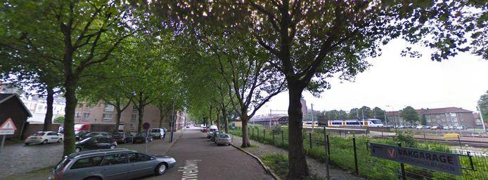 Bomen langs de Boschveldweg worden komende jaren gekapt