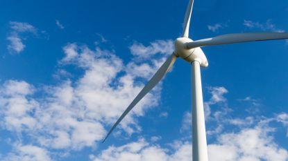 Terneuzen verzet zich niet tegen windturbines op grens Canisvliet