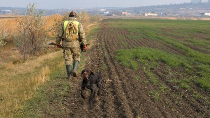 Stad verlengt jachtrechten voor onbepaalde duur (maar jagers mogen niet alles schieten)