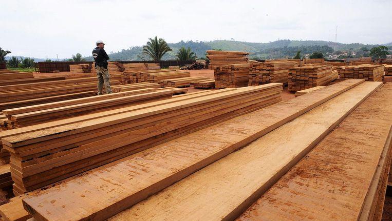 Een houtzagerij in het Amazonegebied. Beeld null