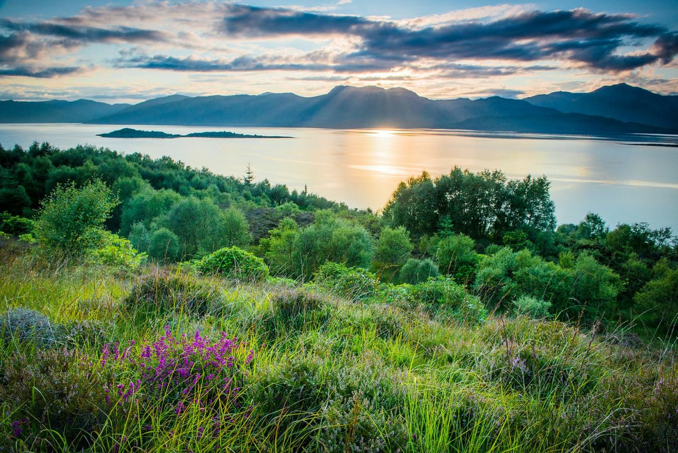Met het geld dat het Highland Titles Charitable Trust verdient met de verkoop van adellijke titels wordt landbouwgrond weer 'terugveranderd' in natuurgebied.