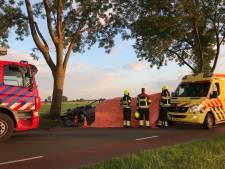 Verongelukte automobilist in Hedel is 44-jarige Bosschenaar: 'Het is niet te bevatten'