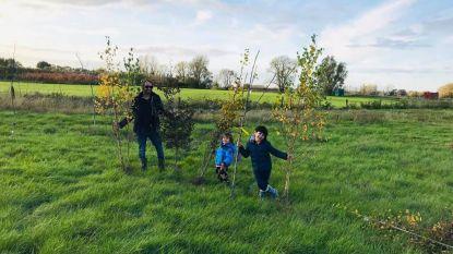"""Benoit doet oproep aan tuincentra: """"Breng struiken en bomen naar hier, dan planten we een coronabos"""""""